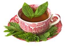 Tasse de thé de menthe poivrée avec les feuilles fraîches Photo libre de droits
