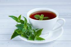 Tasse de thé en bon état et un groupe de menthe sur la table Photographie stock