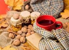 Tasse de thé entourée par le fond rouge d'écharpe avec les feuilles et les noix tombées d'érable Appréciez l'atmosphère automnale photographie stock libre de droits