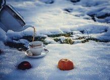Tasse de thé et de pommes sur la neige Photographie stock
