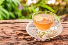 Tasse de thé de gingembre avec des tranches de gingembre Images libres de droits
