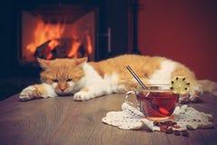 Tasse de thé sur la table contre le contexte du feu dans la cheminée Photos libres de droits
