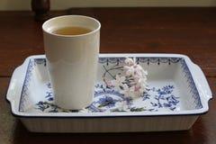 Tasse de thé vert avec le brin du jasmin d'étoile sur le plateau Images stock