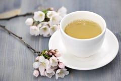 Tasse des fleurs de cerisier de thé vert et de Japonais Images stock