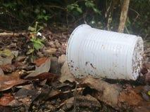 Tasse en plastique et la pollution sur le pal?tuvier image stock