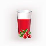 Tasse en verre avec du jus Photographie stock