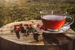 Tasse en verre avec la tisane sur un tronçon en bois image stock
