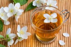 Tasse en verre de thé avec le jasmin Photographie stock libre de droits