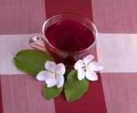 Tasse en verre de thé de ketmie image libre de droits