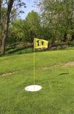 Tasse et drapeau de boule de terrain de golf de pied image libre de droits