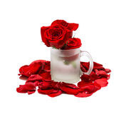 Tasse et roses rouges dans des pétales d'isolement sur le blanc Photo stock