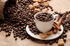 Tasse et soucoupe remplie de grains de café Image stock
