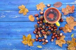 Tasse jaune de tisane sur le fond en bois âgé avec des feuilles et des châtaignes d'automne de chute Photo stock