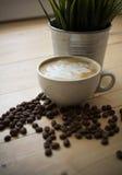 Tasse Kaffee mit Anlage im Topf Stockbild