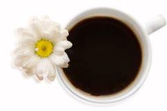 Tasse Kaffee mit Blume Lizenzfreies Stockfoto