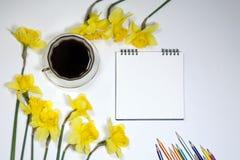 Tasse Kaffee und eine Untertasse, Narzissen und Bleistifte auf einem weißen Hintergrund Stockfoto