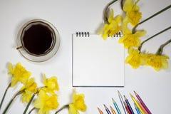 Tasse Kaffee und eine Untertasse, Narzissen und Bleistifte auf einem weißen Hintergrund Lizenzfreie Stockfotos