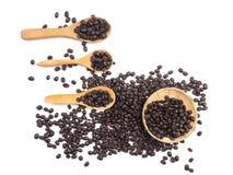 Tasse Kaffee und Kaffeebohnen auf hölzernem Löffel auf weißem backgrou Lizenzfreie Stockfotos