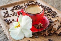 Tasse Kaffee an verziert mit Gewürzen und Blume Lizenzfreies Stockfoto