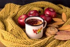 Tasse ou tasse d'écharpe tricotée chaude chaude Autumn Maple Leaves Wooden Background Autumn Cold Season Red Appl de Berry Lemon  images libres de droits