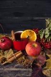 Tasse rouge de vin chaud chaud en automne parmi des feuilles Photos libres de droits