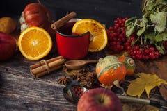Tasse rouge de vin chaud chaud en automne parmi des feuilles Photographie stock