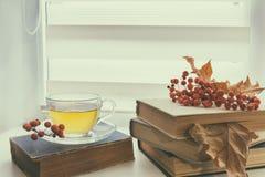 Tasse Tee, alte Bücher, Herbstlaub und Beeren Stockfotos