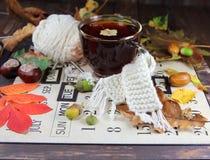 Tasse Tee mit einem gestrickten Schal stockfotos