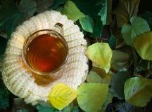 Tasse Tee mit Herbstlaub Jahreszeit der Bildung Schale auf einer gestrickten Untertasse, ein Symbol der Wärme und Komfort Lizenzfreie Stockfotos