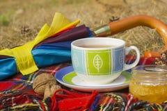 Tasse Tee mit Honig und Regenschirm am Herbst u. an x28; fall& x29; Lizenzfreies Stockbild