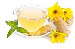 Tasse Tee mit Ingwerscheiben und Echinacea blühen Lizenzfreie Stockfotos