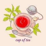 Tasse Tee mit Löffel und Sieb Lizenzfreies Stockfoto