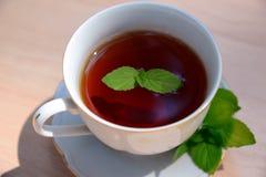 Tasse Tee mit Minze Lizenzfreies Stockbild
