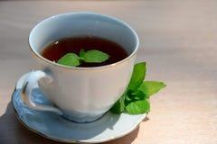 Tasse Tee mit Minze Stockfoto