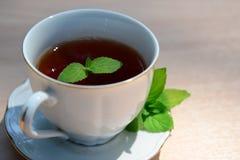 Tasse Tee mit Minze Lizenzfreie Stockbilder