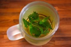 Tasse Tee mit tadellosen Blättern Stockbilder