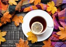 Tasse Tee mit Zitrone mit Schal und Herbstlaub Lizenzfreies Stockfoto