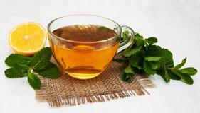 Tasse Tee mit Zitrone und Minze Lizenzfreie Stockfotografie