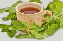 Tasse Tee nützlich zur Gesundheit lizenzfreies stockfoto