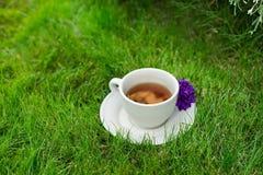 Tasse Tee oder Kaffee auf frischem grünem Gras mit Blume Stockfoto