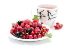 Tasse Tee und Beeren Stockbild