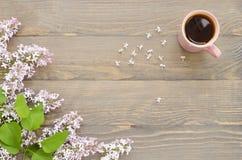 Tasse Tee und Flieder Stockfotos