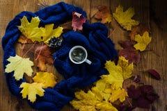 Tasse Tee und Herbstlaub Stockfotos