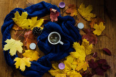 Tasse Tee und Herbstlaub Stockbild