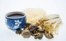 Tasse Tee und Pilzvielzahl Lizenzfreies Stockbild
