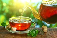 Tasse Tee und Teekanne. Lizenzfreie Stockbilder