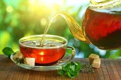 Tasse Tee und Teekanne.