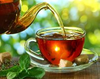 Tasse Tee und Teekanne. Lizenzfreie Stockfotografie