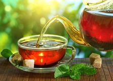Tasse Tee und Teekanne. Stockfoto
