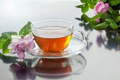 Tasse transparente avec le thé vert et le bouquet de fines herbes frais Photos stock